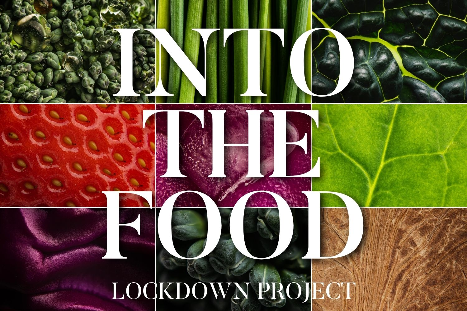 Into The Food: Lockdown Project
